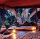 Five Best Tented Camps