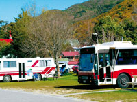 Buses parked in the Havelock Camp