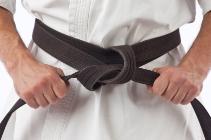 10232-Martial_Arts___Copy