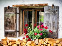 11308-firewood