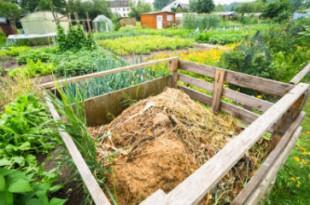 1325-compost_image