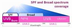 2978 SPF broad coverage diagram