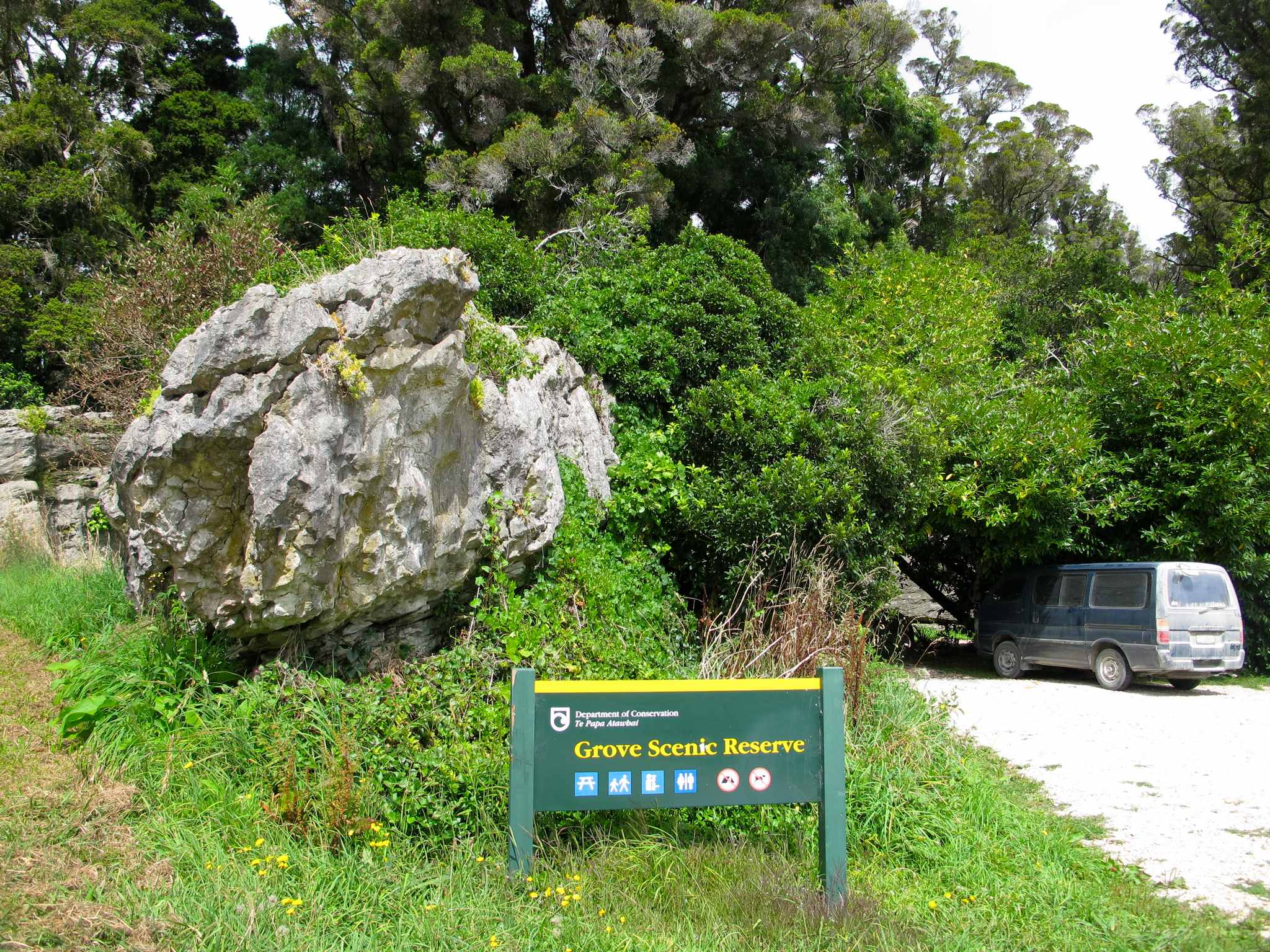 3 the grove carpark near takaka 03