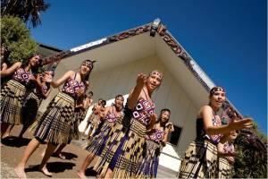 4539 Mt Roskill Grammar Maori