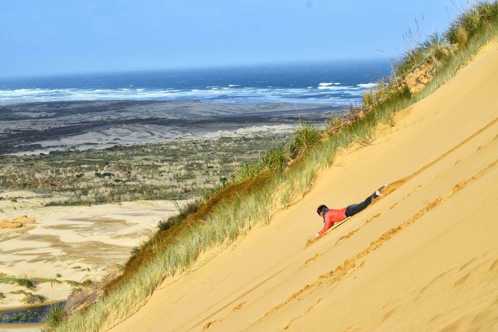 7-Sand-Boarding-Northland-New-Zealand_07
