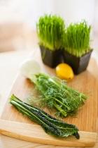 744-745_herbs