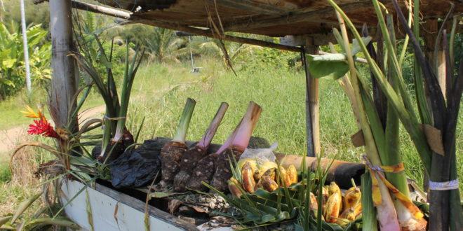 A roadside stall on the tropical East Coast.