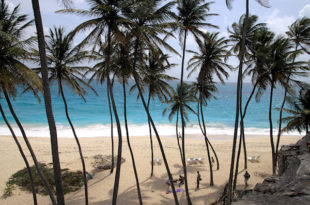 Barbados Beach copy