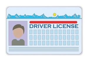 colorful illustration with driver license  on a white background