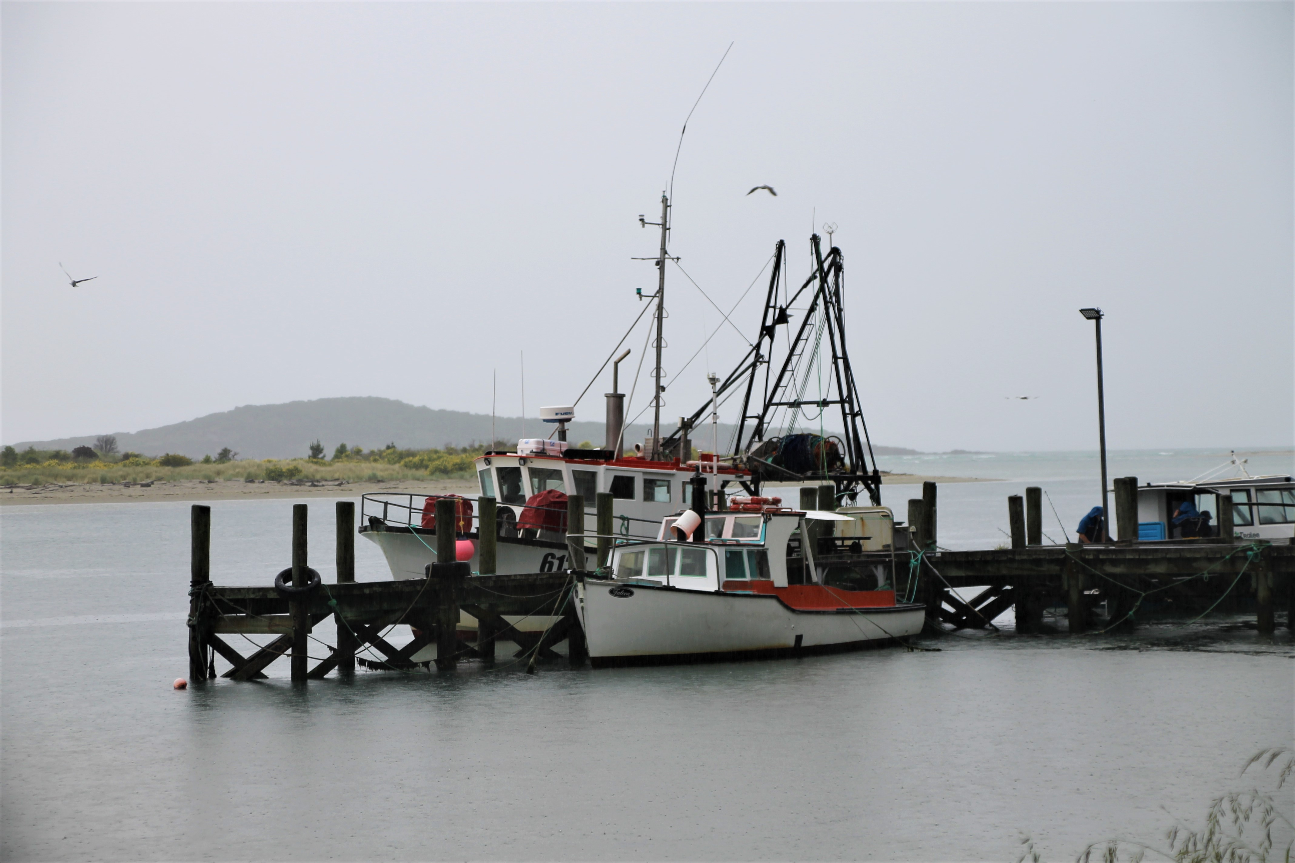 Fishing boats at Taireri Mouth.
