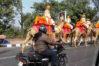 indiadelhicamels