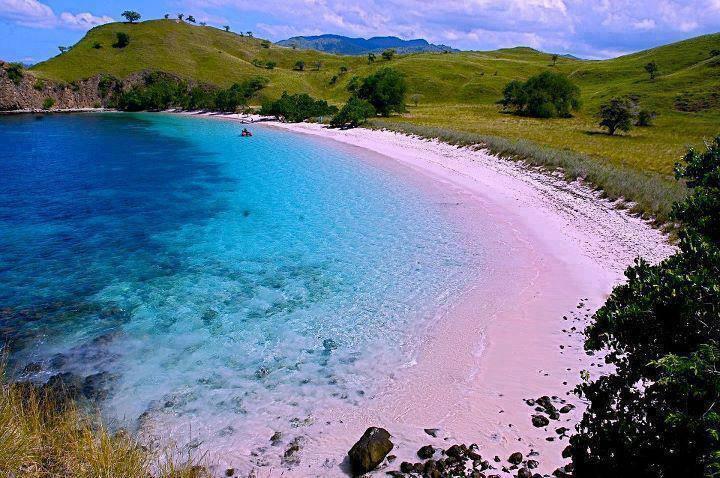 Pink beach in Lombok Indonesia 80740007557 n