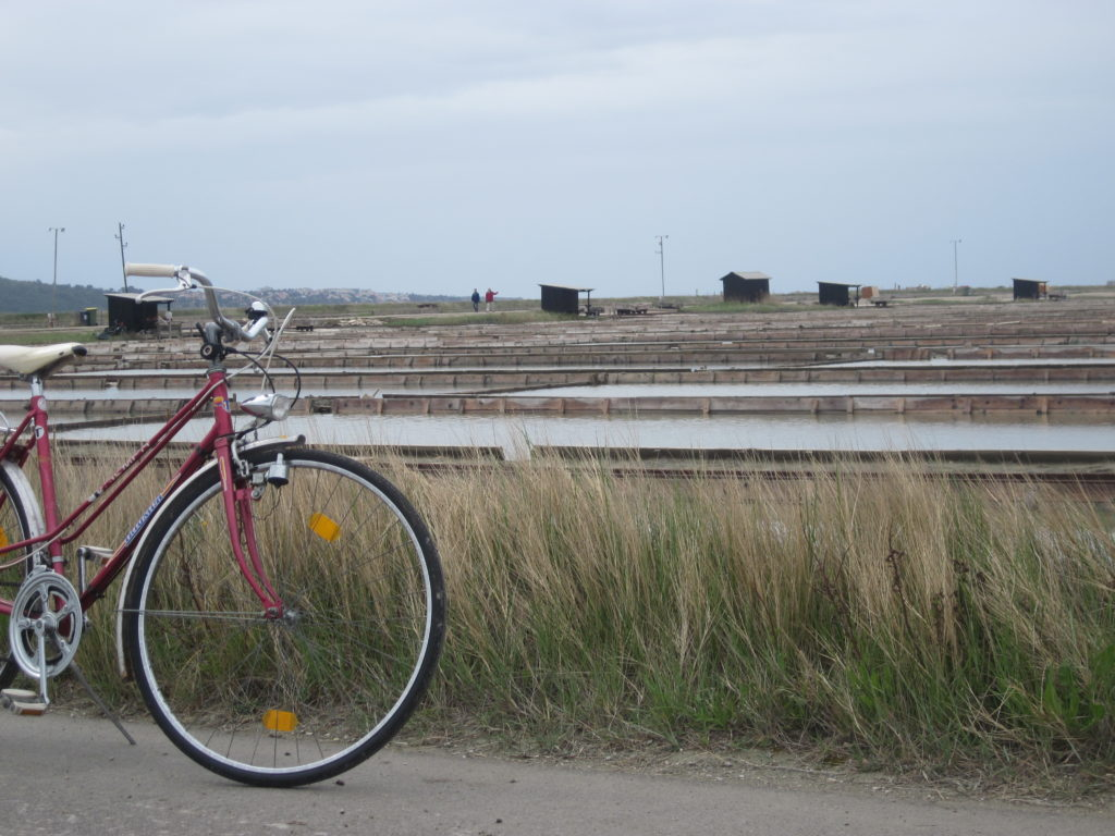 Pirans picturesque salt pans visit them by bike.