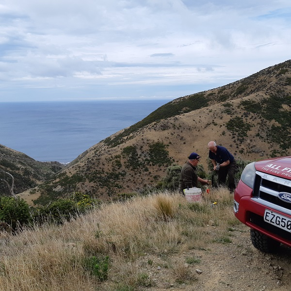 Predator trapping thanks to the help of an off road vehicle. Credit Wellington CCVC