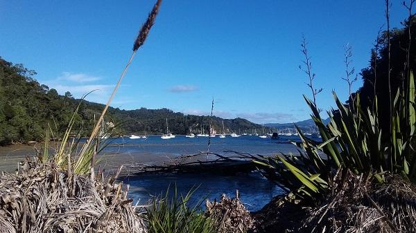 Pretty Back Bay