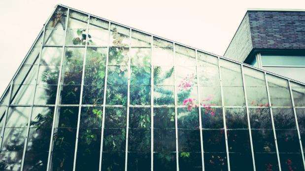 steel greenhouse