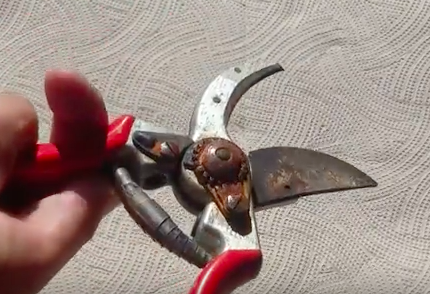 Video How To Remove Rust From Garden Tools Grownups New