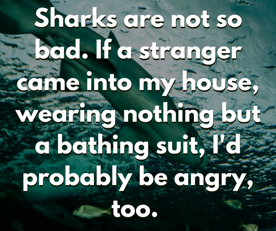 Sharks are not so bad. If a stranger came into my house wearing nothing but a bathing suit Id probably be angry too. 1