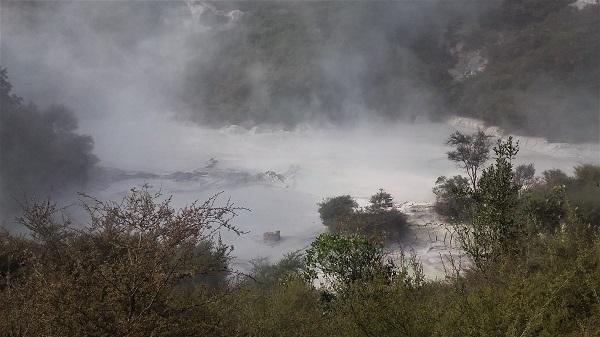 Stunny hot pools at Te Kopia Scenic Reserve