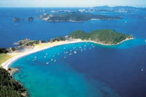 auckland-to-hokianga-bay-of-islands-3-day-private-luxury-tour-time-unlimited-tours