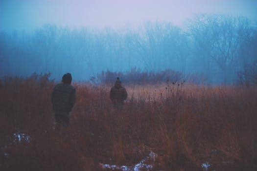 cold-nature-people-walking