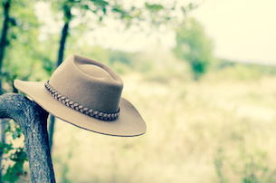 brown cowboy hat hung on the branch in the meadow retro effect
