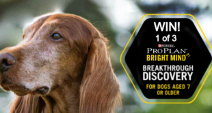 banner purina proplan brightmind dog food