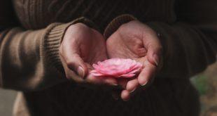 Flower - mindfulness