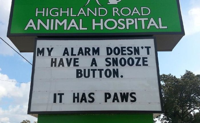 funny-vet-signs-59ae5613380c9__700