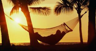 hammock sunset