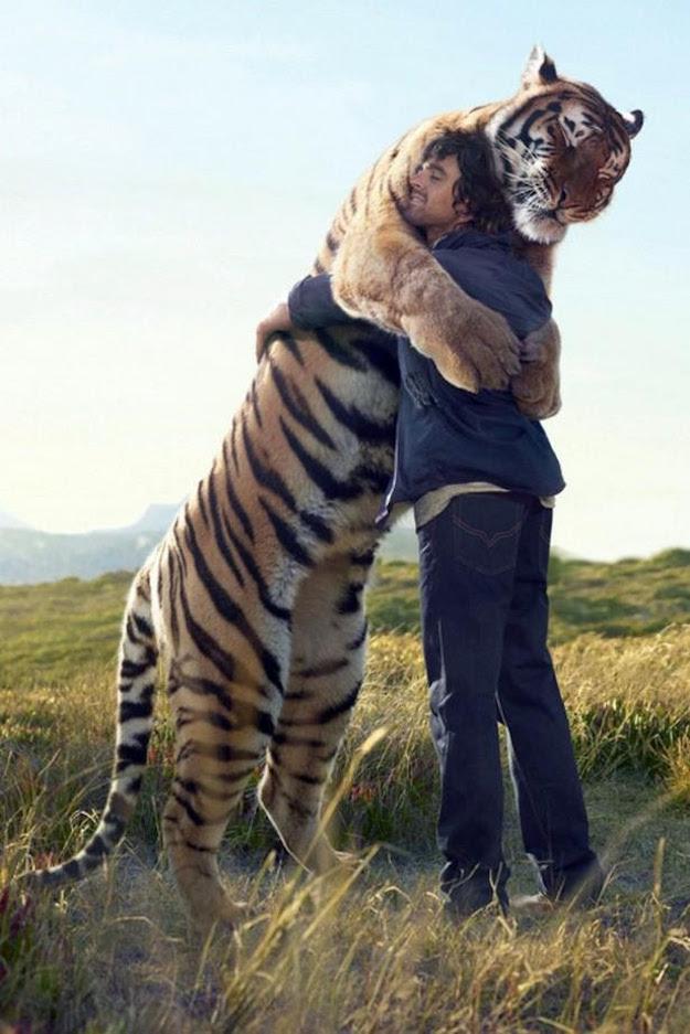 hug 6