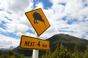 Kiwi road sign on a cloudy day