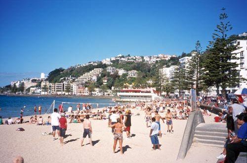 A Wellington Summer To Remember Grownups New Zealand