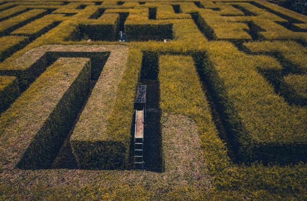 A-maz-ing mazes to entertain you this summer