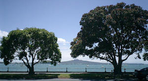 Rangitoto from Tamaki Dr