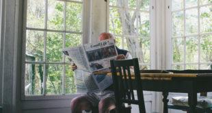 media, newspaper, reading, relax