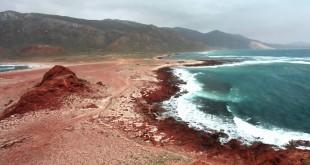 Socotra Island – Alien Life on Earth