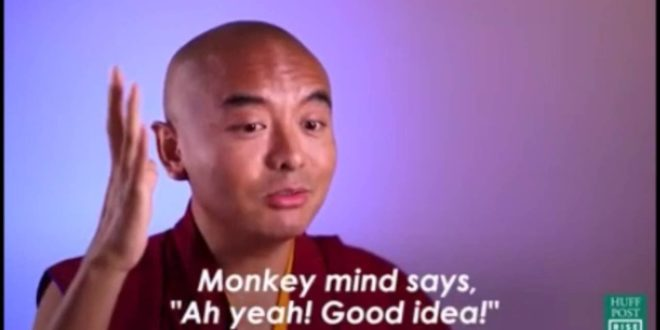 video buddhist monk shares his s