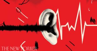 video the dangers of noise pollu
