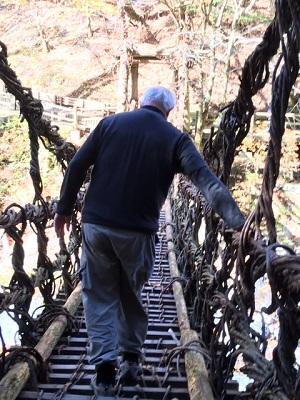 The Vine Bridge