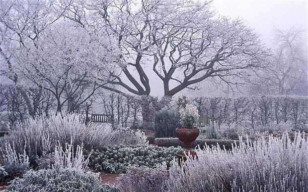 winter-view_1779830b